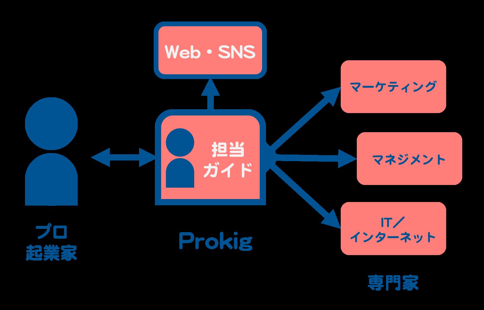 prokig_structure2